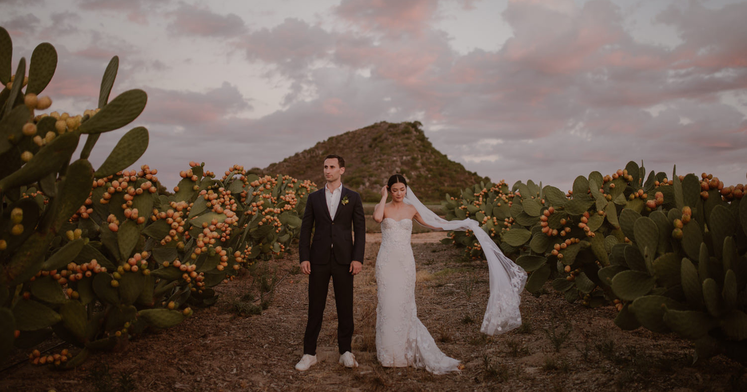 The most picturesque wedding venues in Cape