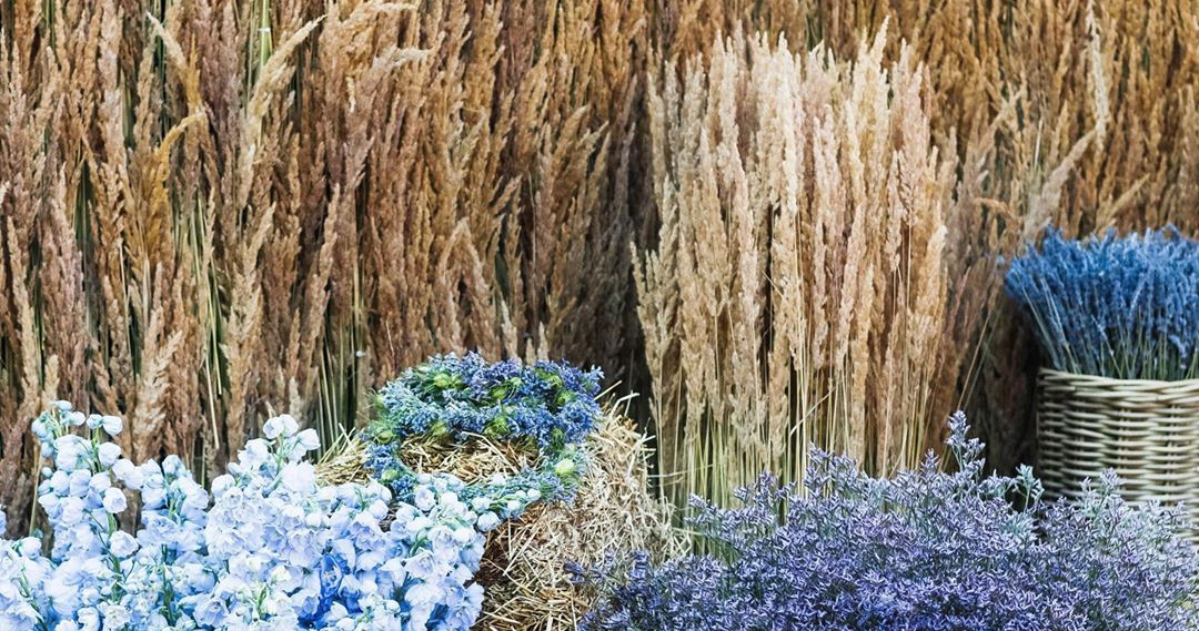 Dried flowers are the most fashionable wedding
