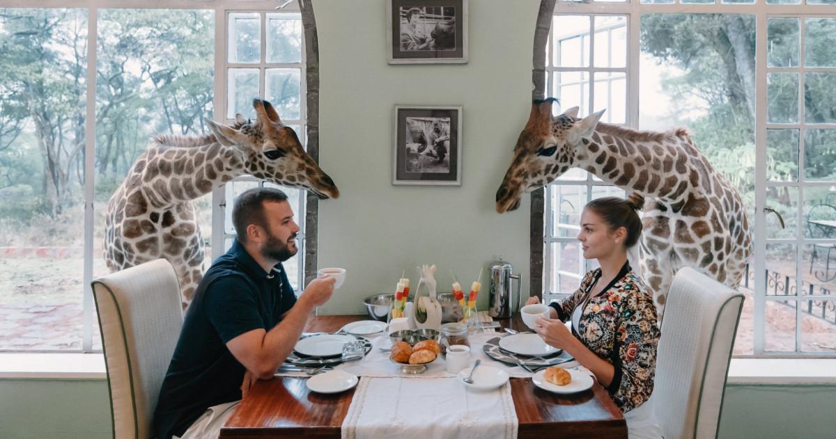 Медовый месяц в отеле Giraffe Manor